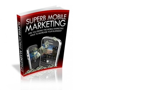 Pay for Superb Internet Business Mobile Marketing eBook