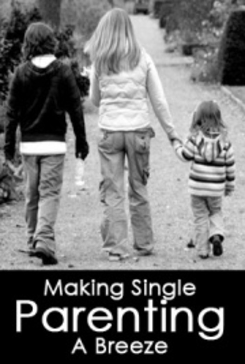 single parent issues For single parents, the key issue is choosing the best caregiver for your child or  children you cannot start this process too early, and you may.