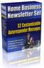 Thumbnail Home Business Newsletter Set plr