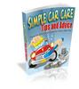 Thumbnail Simple Car Care TIps and Tricks plr