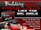 Thumbnail Building Big Email Lists Like the Big Dogs - Video Serie plr