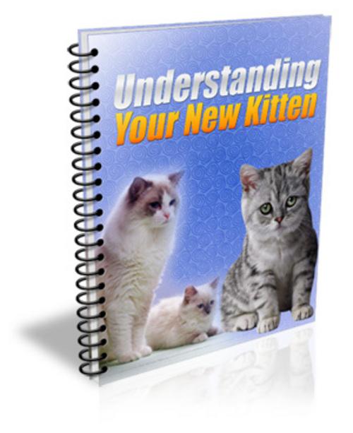 Pay for Understanding Your New Kitten (PLR)