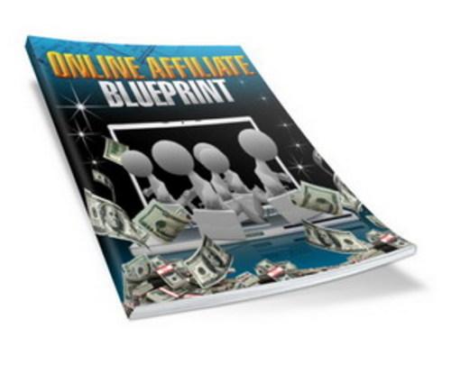 Pay for Online Affiliate Blueprint (Viral PLR)