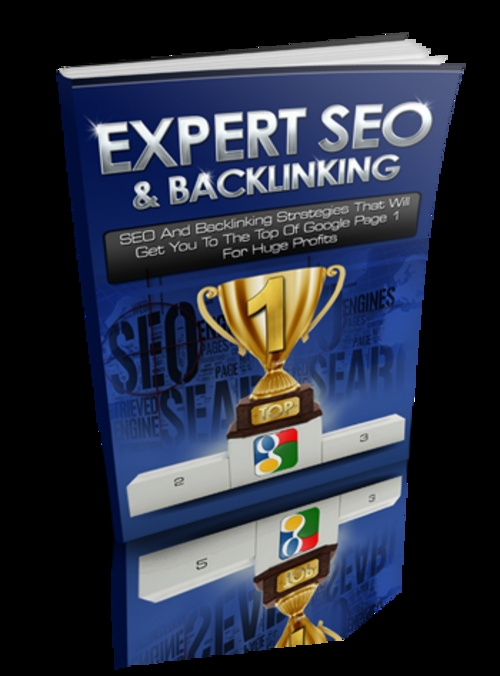 Pay for Expert SEO and Back Linking plr