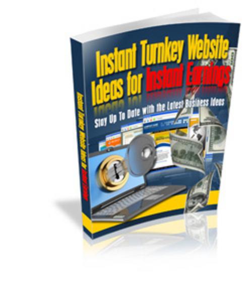 Pay for Instant Turnkey Website Ideas for Instant Earnings plr