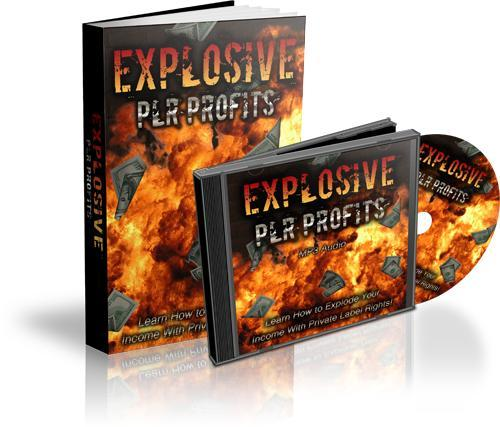 Pay for Explosive PLR Profits - eBook and Audio plr