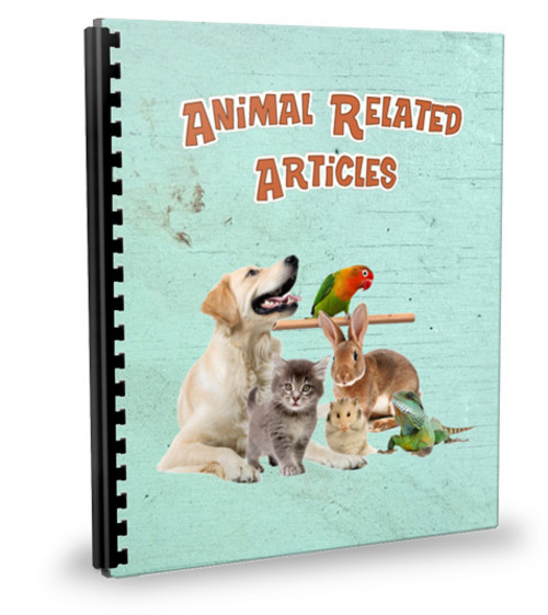 Pay for 20 Pets Articles - Feb 2012 (PLR)