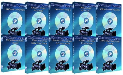 Pay for Optimizing Wordpress 2.8 - Video Series plr