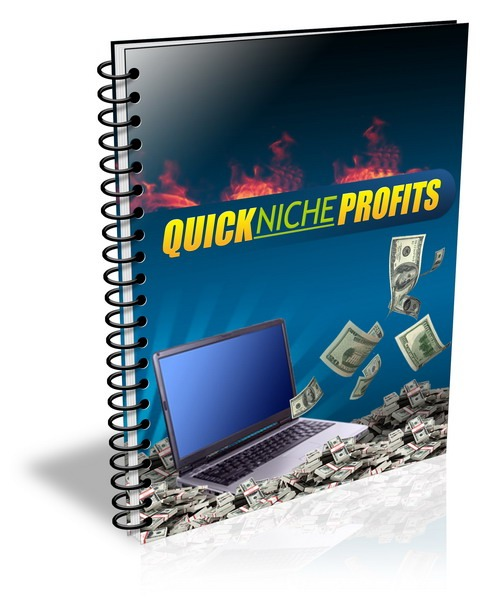 Pay for Quick Niche Profits - eBook and Audio (PLR)