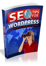 Pay for SEO for WordPress