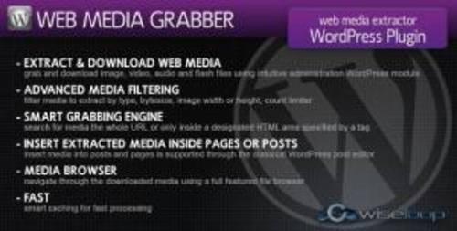 Pay for Codecanyon Web Media Grabber.zip