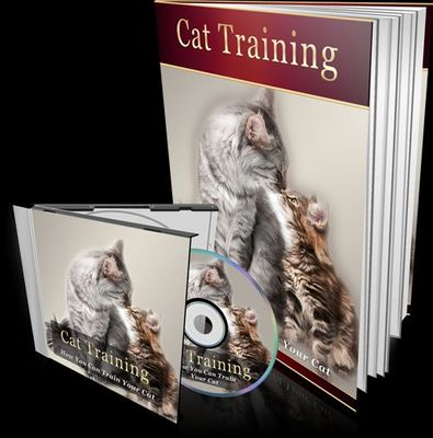 Pay for Cat Training eBook + Audio w/MRR