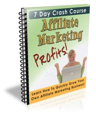 Pay for Affiliate Marketing Profits 7 Day eCourse With Private Label