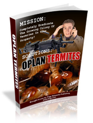 Termites in trading system