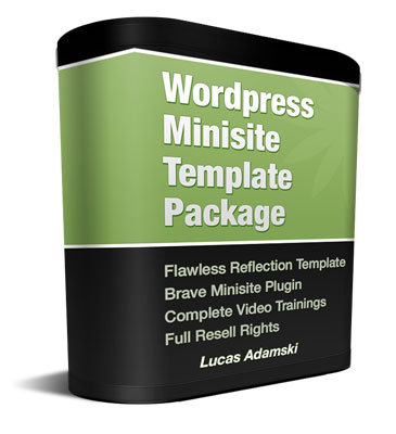 Pay for Flawless Reflection WordPress Minisite with Private Label Ri