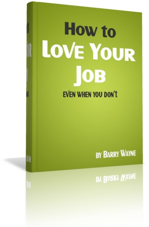 Pay for How To Love Your Job