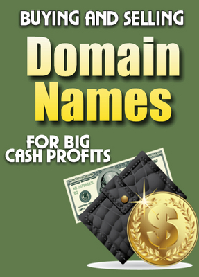 Pay for Buying & Selling Domain Names - for cash profits