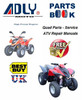 Adly ATV Quad Bike Manuals for Mechanics