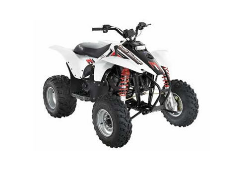 polaris trailblazer 250 service manual repair 2004 2006 download rh tradebit com Polaris 250 Trailblazer Engine Diagram Polaris Trailblazer 250 Parts
