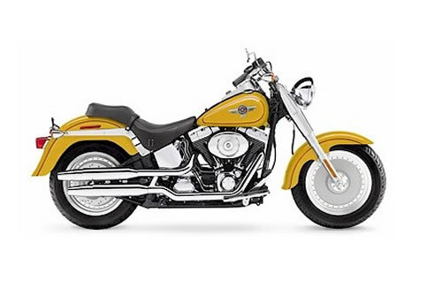 harley davidson softail models service manual repair 2006. Black Bedroom Furniture Sets. Home Design Ideas