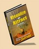 Thumbnail Visualize And Attract eBook