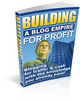 Thumbnail Building a Blog Empire For Profit