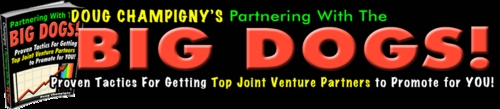 Pay for Partnering With The Big Dogs - The Truth About Joint Ventures
