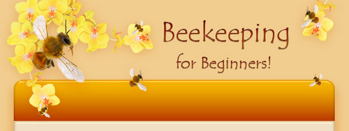 Beekeeping for beginners beginners beekeeping bible download eb - Beekeeping beginners small business ...