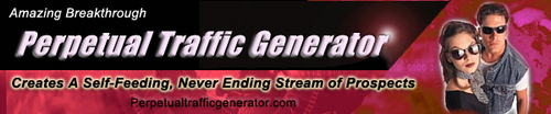 Pay for Perpetual Traffic Generator