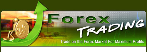 Forex business fake or right