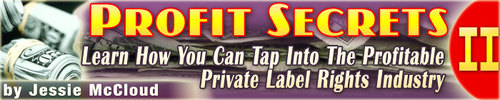 Pay for Profit Secrets II - Learn How You Can Tap Into PLR