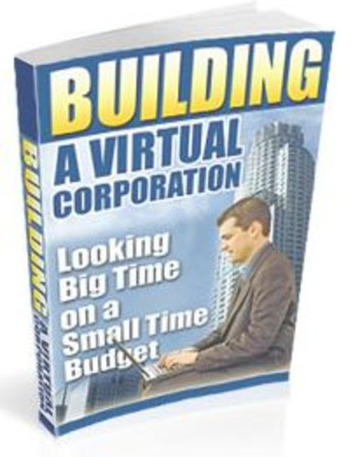 Pay for Building a Virtual Corporation as your internet Business