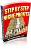 Thumbnail Step By Step Niche Profits - PLR