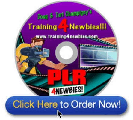 Pay for PLR For Newbies Video Series-Make your own unique products