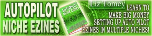 Thumbnail Autopilot Niche Ezines Ecourse
