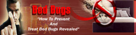 Thumbnail Bed Bugs Uncovered 5 Day Ecourse