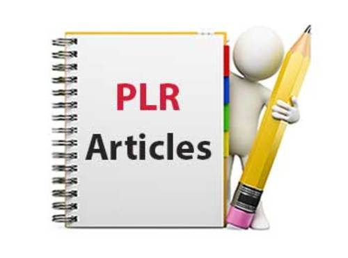 Pay for PLR Accounting Articles + Bonus (Article Analyzer)