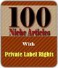 Thumbnail 100 Niche Articles