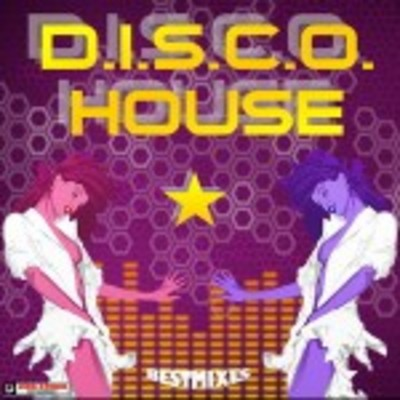 Disco House Music Samples Download Loops