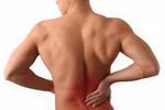 Thumbnail Back Pain Plr Articles- 5 Pack