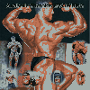 Thumbnail body building and steroids guide.zip