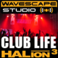 Thumbnail DJ samples - Club Life - Steinberg HALion 3  format