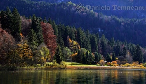 Pay for picturesque landscape of bavarian Alps and lake Alpsee