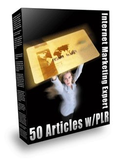 Thumbnail Internet Marketing Expert PLR Articles