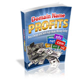 Thumbnail Domain Name Profits