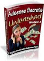 Thumbnail Adsense Secrets Unleashed