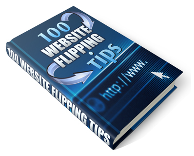 Pay for 100 Website Flipping Tips