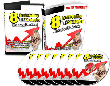 Pay for 8 Profit Pulling PLR Strategies