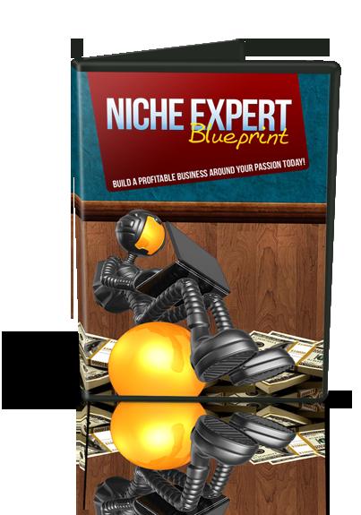 Pay for Niche Expert Blueprint