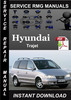 Thumbnail Hyundai Trajet Service Repair Manual Download